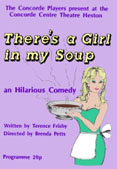 1991 There's a Girl in My Soup